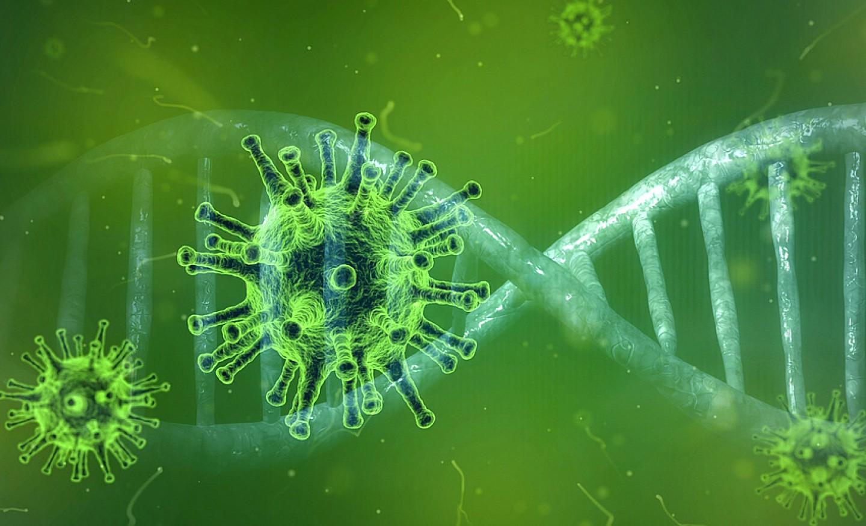 csm_coronavirus_Pete_Linforth_Pixabay_5acb93998b
